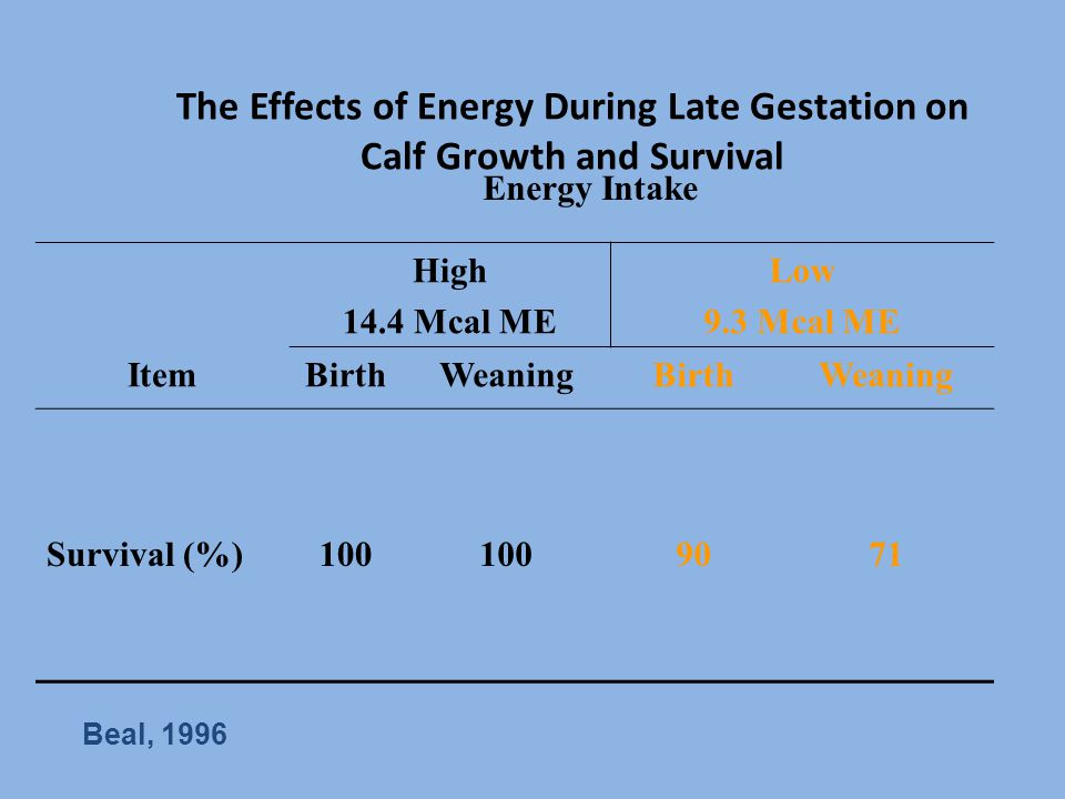 The Effects of Energy During Late Gestation on Calf Growth and Survival