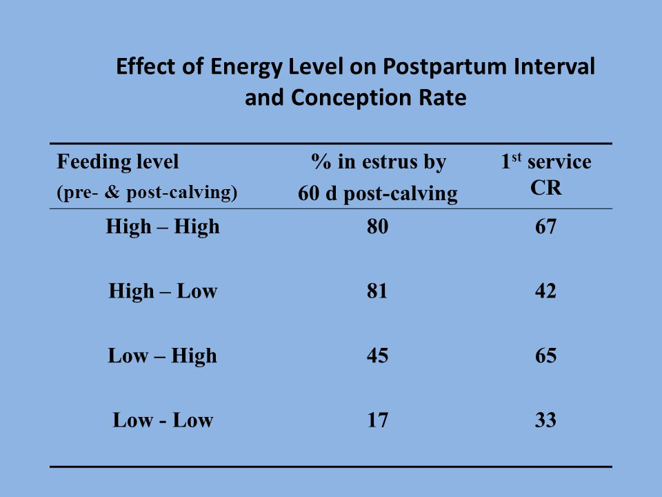 Effect of Energy Level on Postpartum Interval and Conception Rate