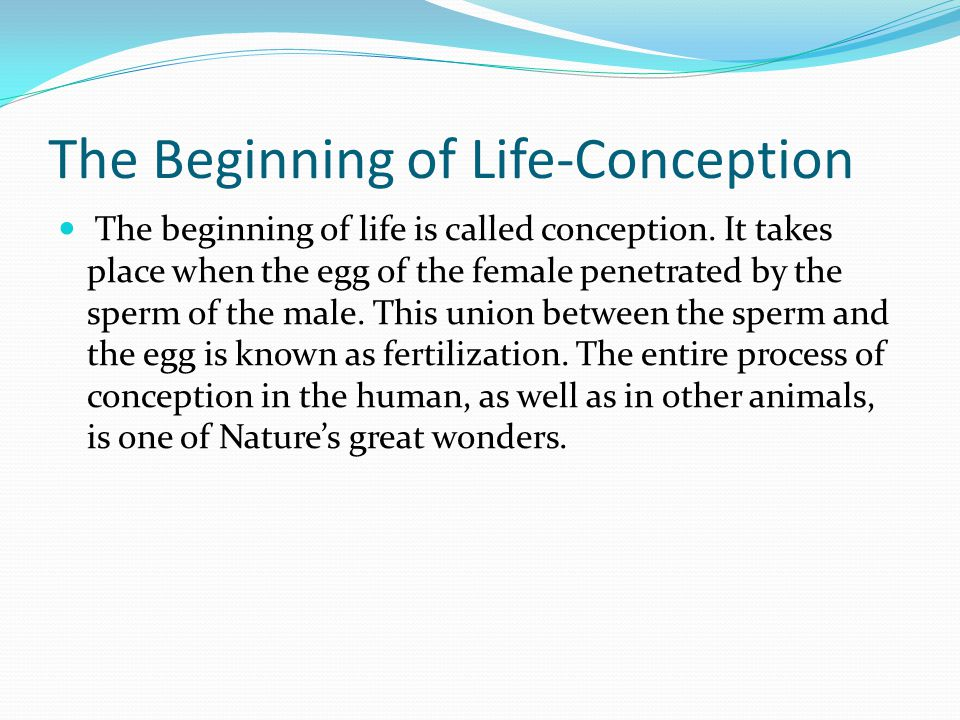 The Beginning of Life-Conception