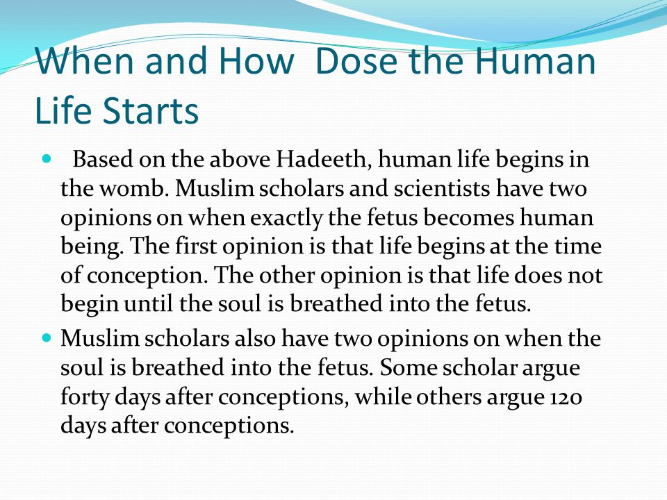When and How Dose the Human Life Starts