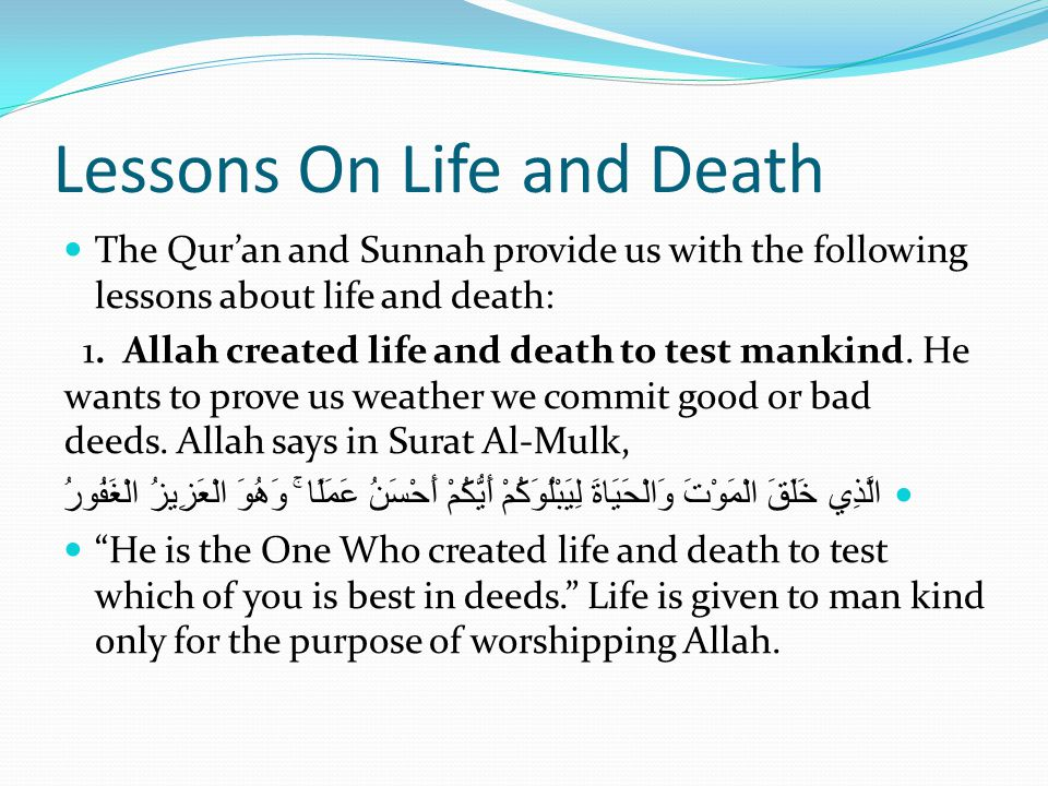 Lessons On Life and Death