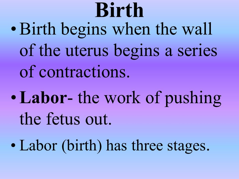 Birth Birth begins when the wall of the uterus begins a series of contractions. Labor- the work of pushing the fetus out.