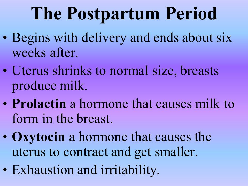 The Postpartum Period Begins with delivery and ends about six weeks after. Uterus shrinks to normal size, breasts produce milk.