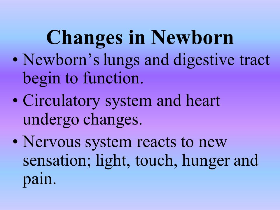 Changes in Newborn Newborn's lungs and digestive tract begin to function. Circulatory system and heart undergo changes.