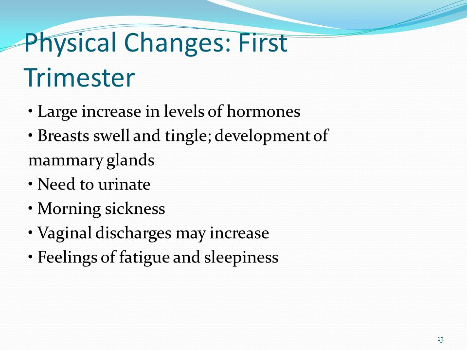 Physical Changes: First Trimester