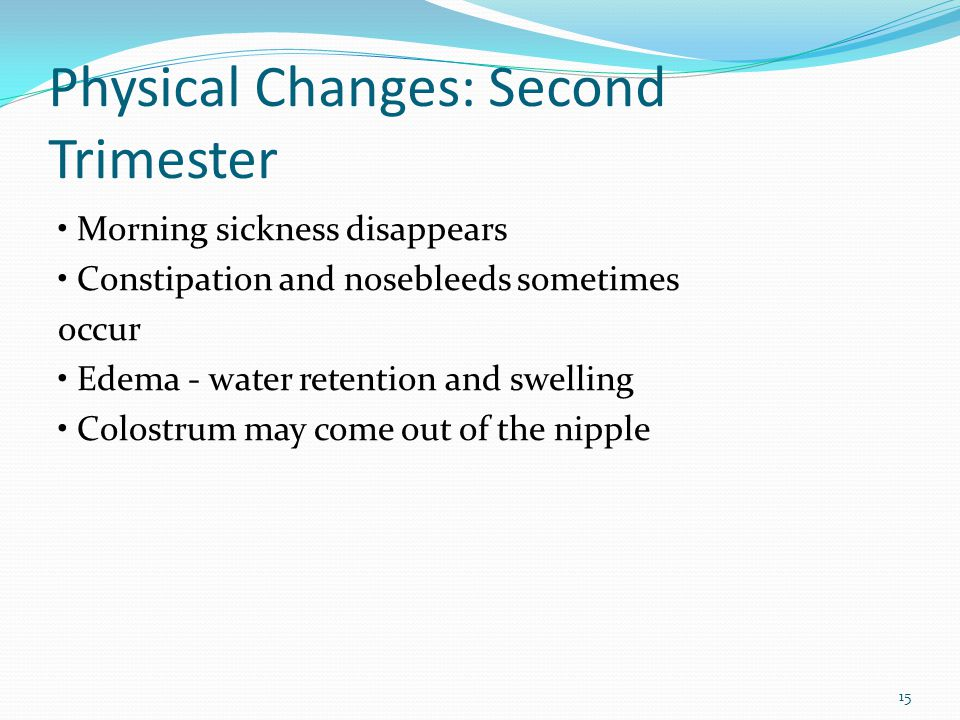 Physical Changes: Second Trimester