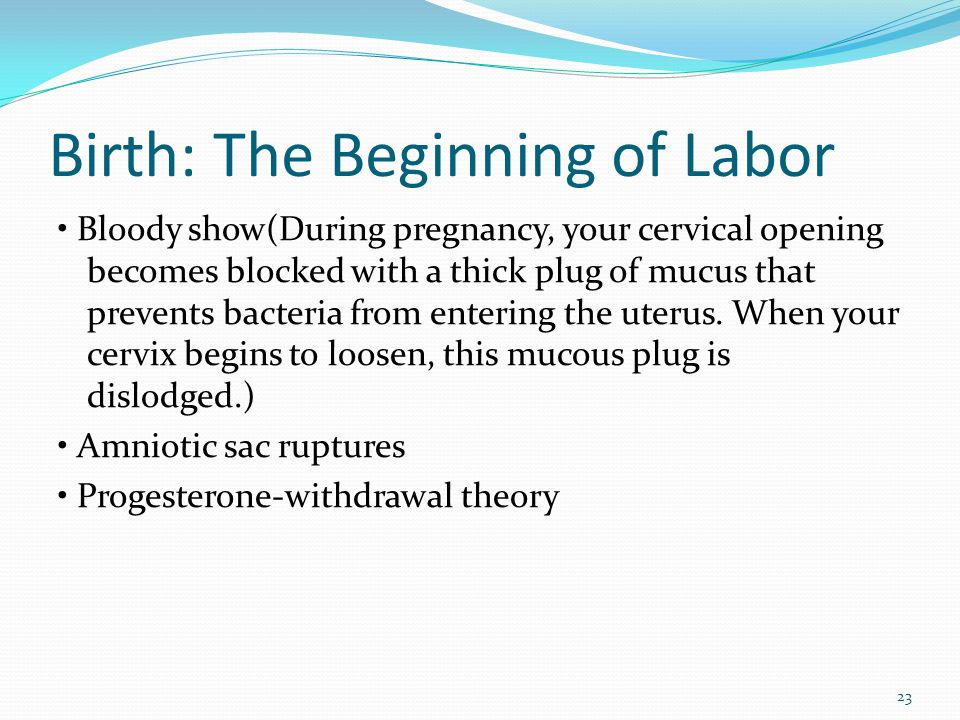Birth: The Beginning of Labor