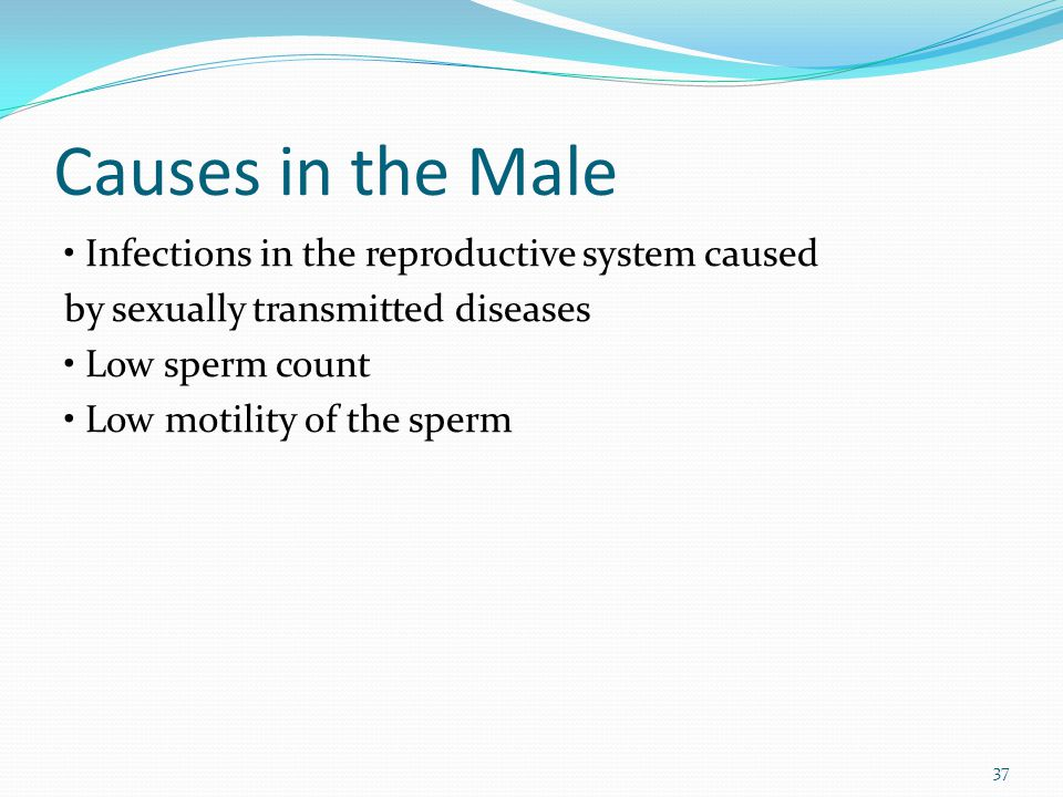 Causes in the Male • Infections in the reproductive system caused by sexually transmitted diseases • Low sperm count • Low motility of the sperm