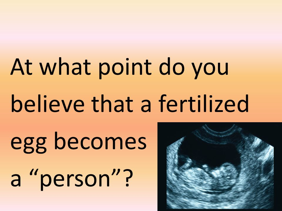 At what point do you believe that a fertilized egg becomes a person