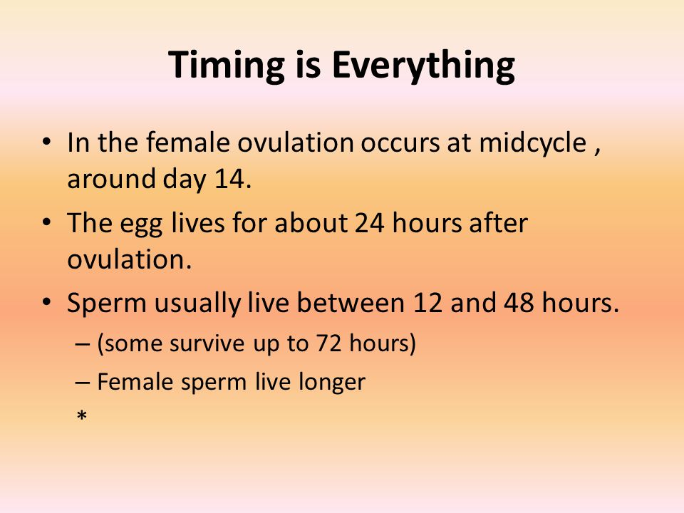 Timing is Everything In the female ovulation occurs at midcycle , around day 14. The egg lives for about 24 hours after ovulation.