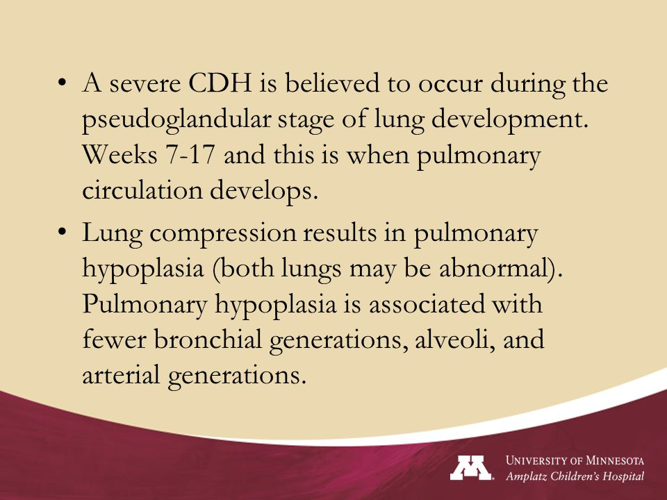 A severe CDH is believed to occur during the pseudoglandular stage of lung development. Weeks 7-17 and this is when pulmonary circulation develops.