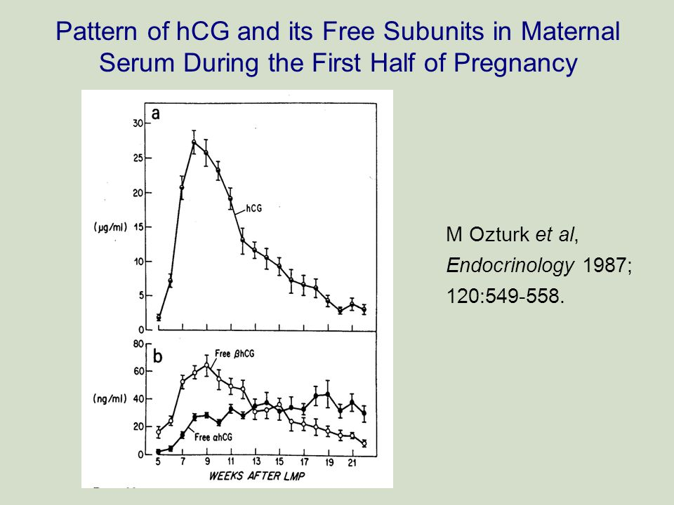 Pattern of hCG and its Free Subunits in Maternal Serum During the First Half of Pregnancy