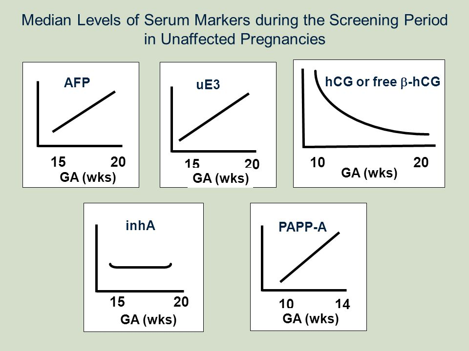 Median Levels of Serum Markers during the Screening Period in Unaffected Pregnancies