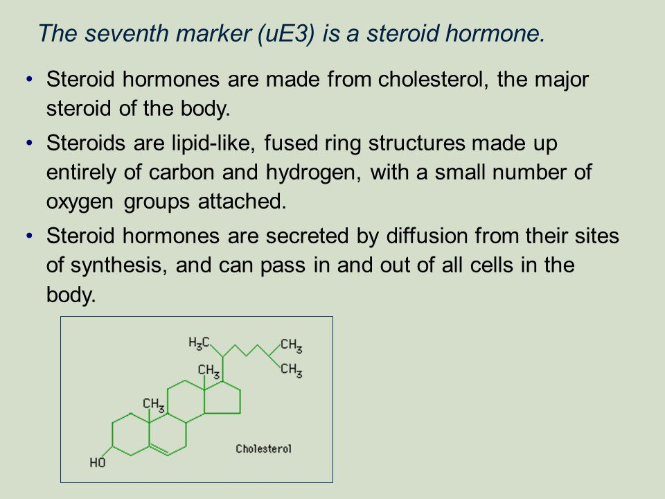 The seventh marker (uE3) is a steroid hormone.