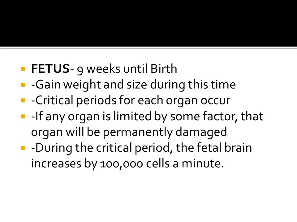 FETUS- 9 weeks until Birth