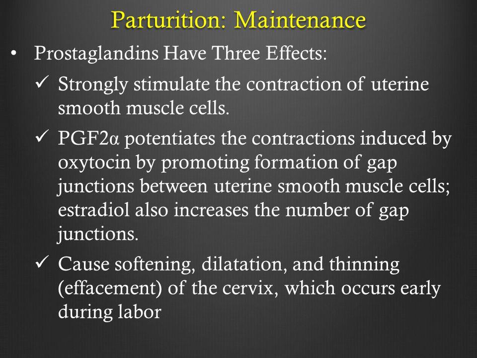 Parturition: Maintenance