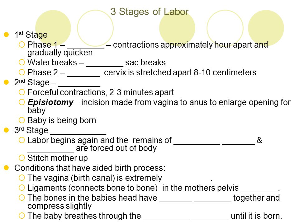 3 Stages of Labor 1st Stage