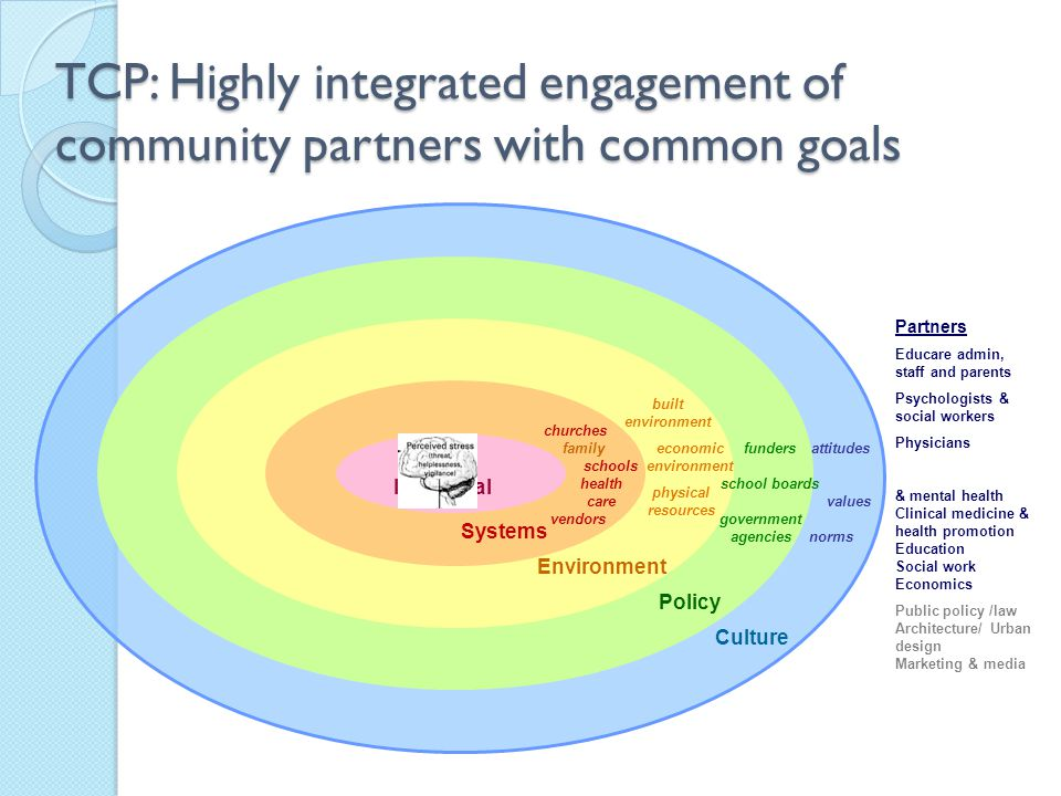 TCP: Highly integrated engagement of community partners with common goals