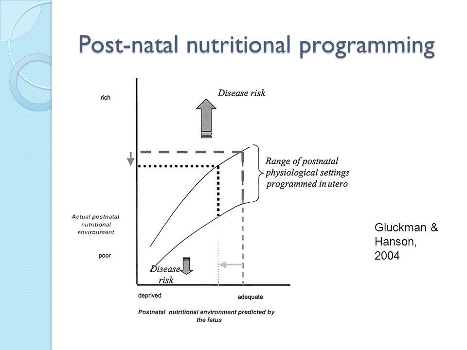 Post-natal nutritional programming