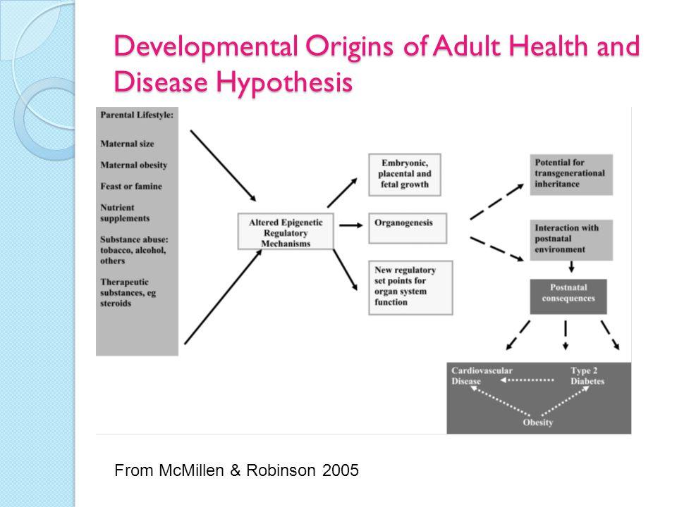 Developmental Origins of Adult Health and Disease Hypothesis