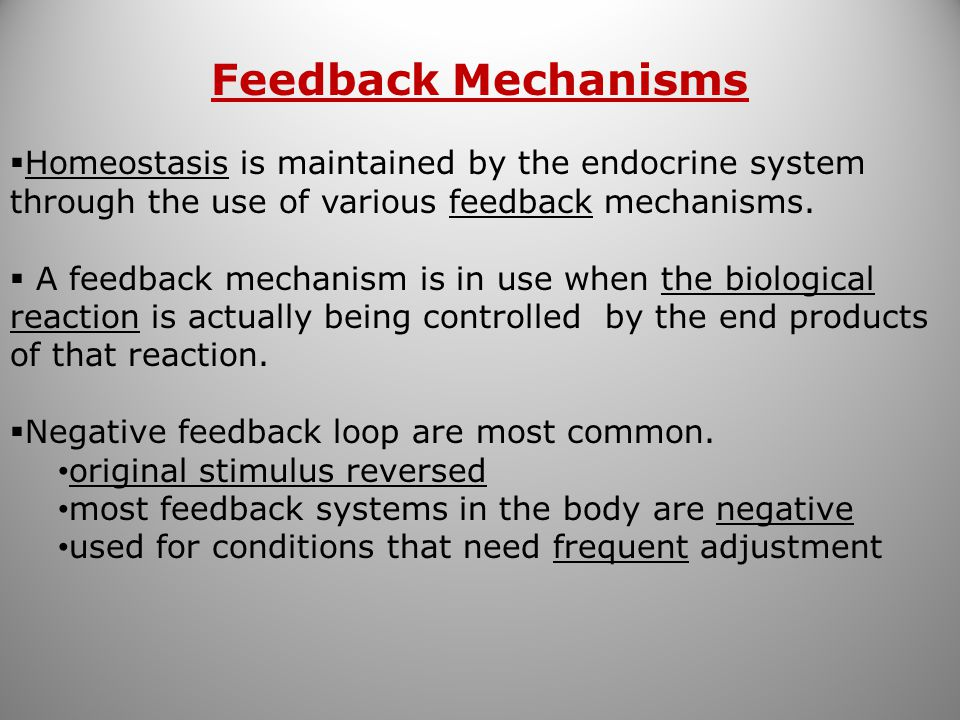 Feedback Mechanisms Homeostasis is maintained by the endocrine system through the use of various feedback mechanisms.