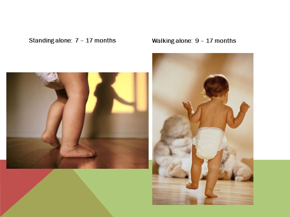 Standing alone: 7 – 17 months