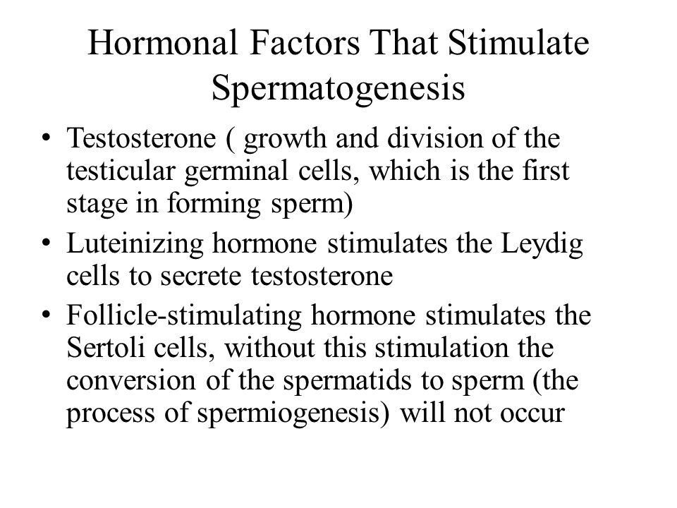 Hormonal Factors That Stimulate Spermatogenesis