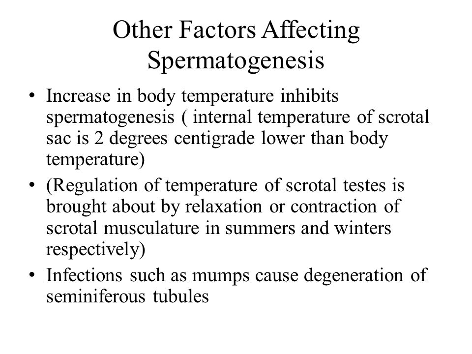 Other Factors Affecting Spermatogenesis