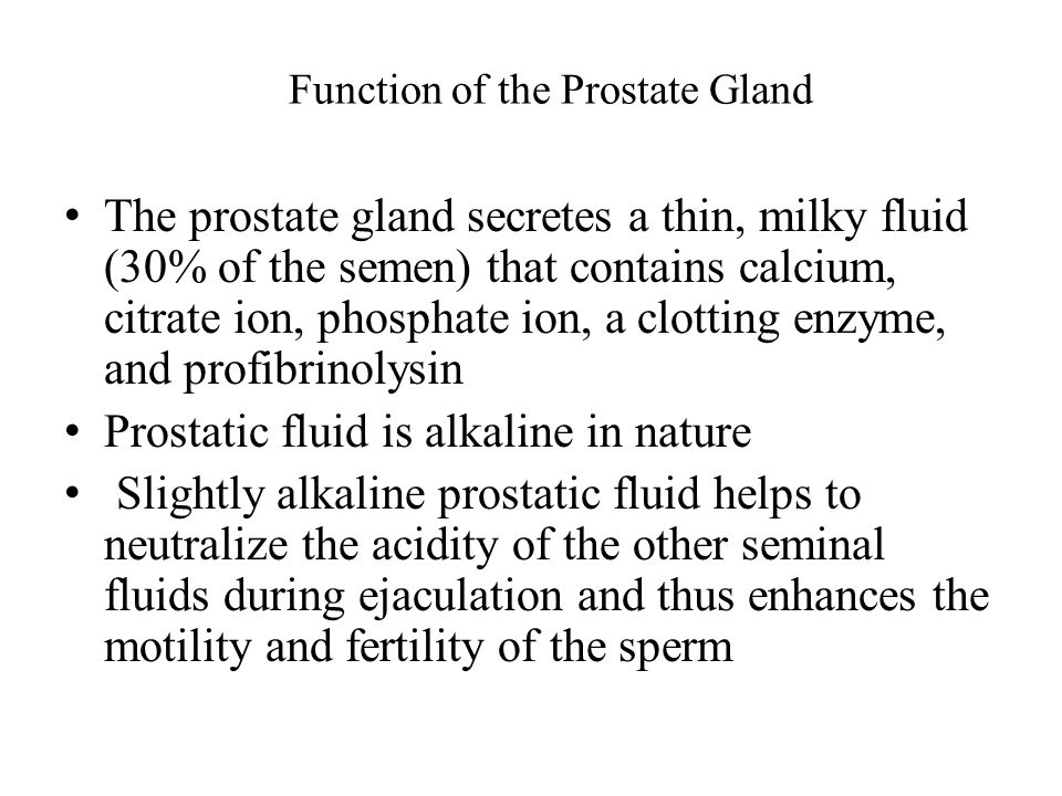 Function of the Prostate Gland