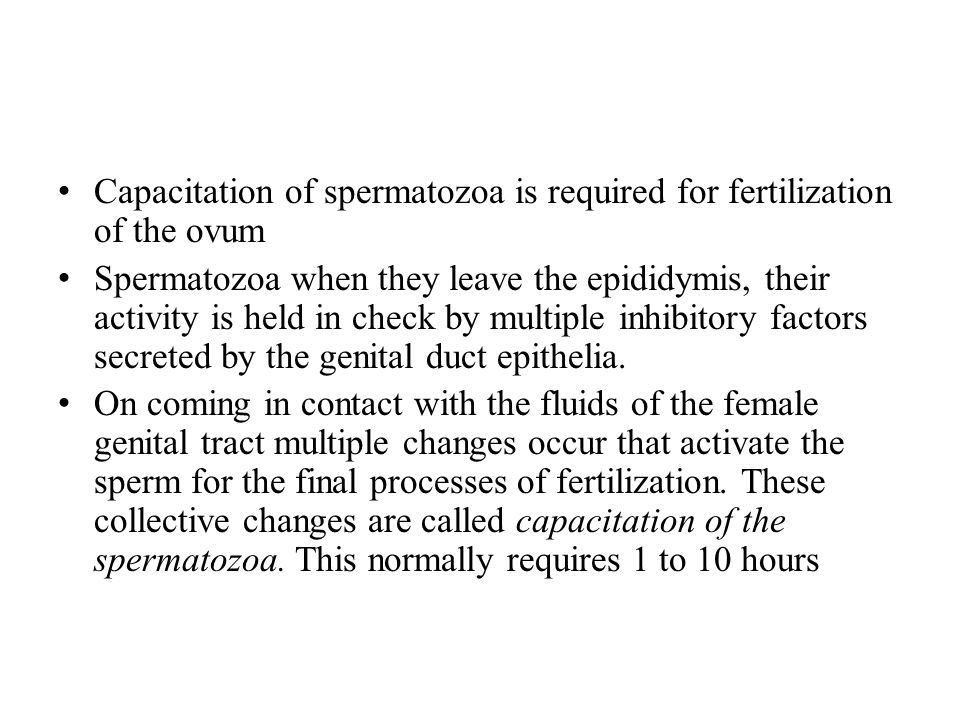 Capacitation of spermatozoa is required for fertilization of the ovum