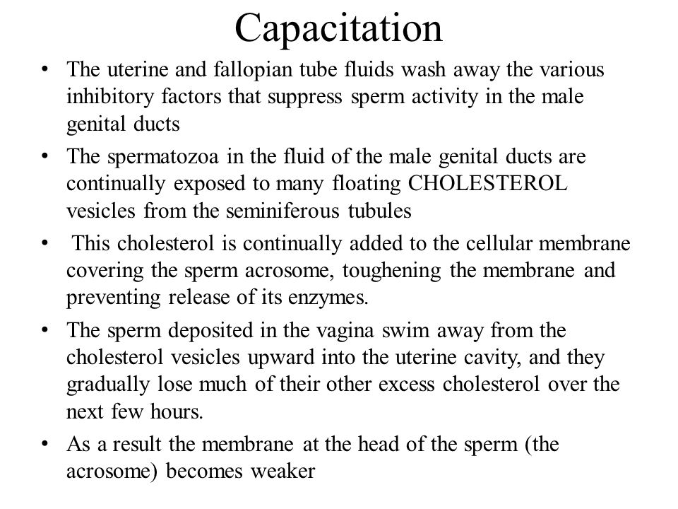 Capacitation The uterine and fallopian tube fluids wash away the various inhibitory factors that suppress sperm activity in the male genital ducts.