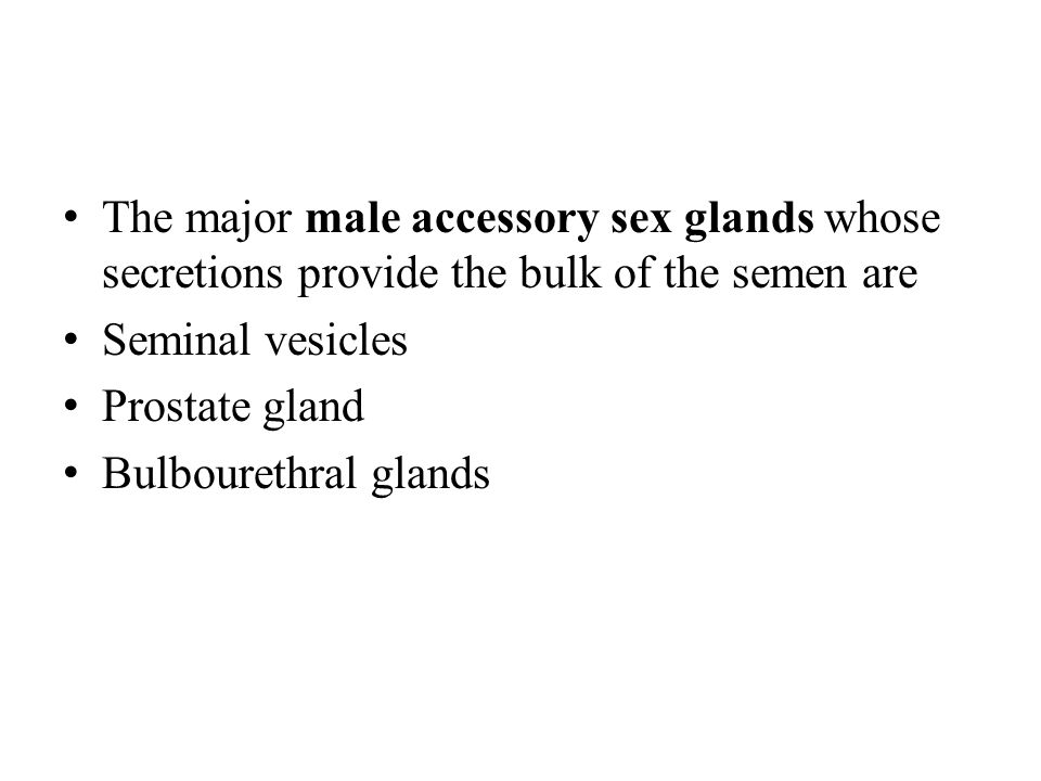 The major male accessory sex glands whose secretions provide the bulk of the semen are