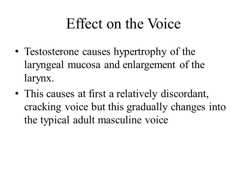Effect on the Voice Testosterone causes hypertrophy of the laryngeal mucosa and enlargement of the larynx.