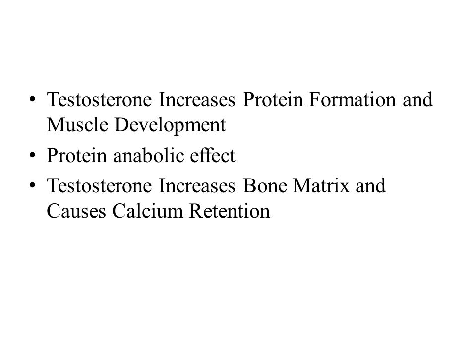 Testosterone Increases Protein Formation and Muscle Development