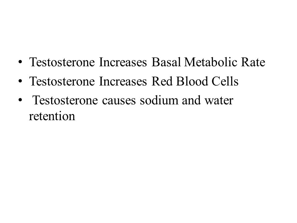 Testosterone Increases Basal Metabolic Rate