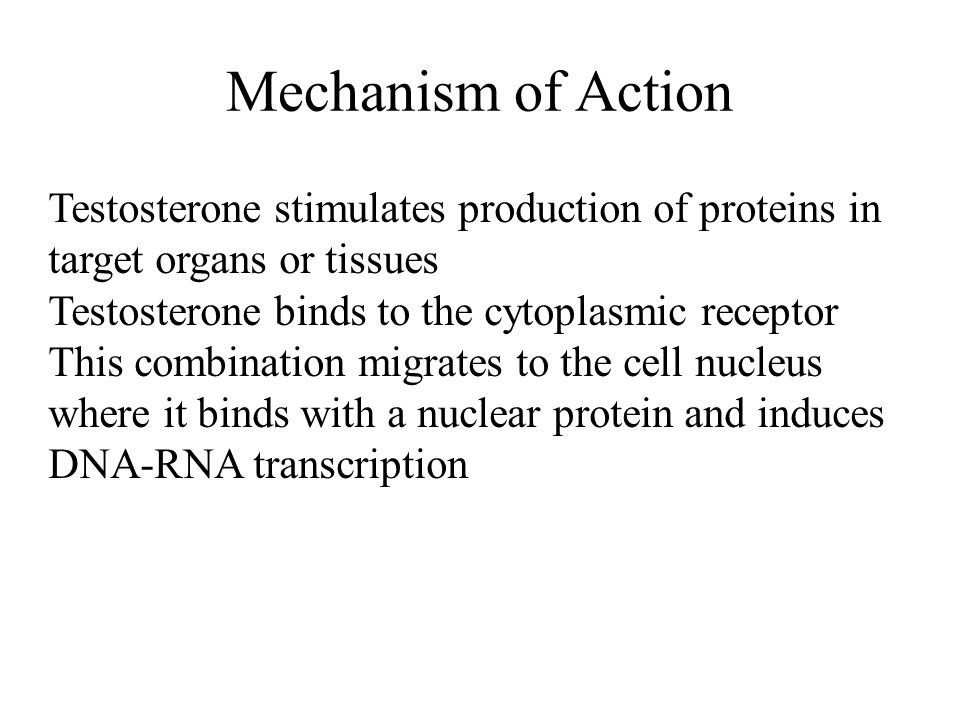 Mechanism of Action Testosterone stimulates production of proteins in target organs or tissues.