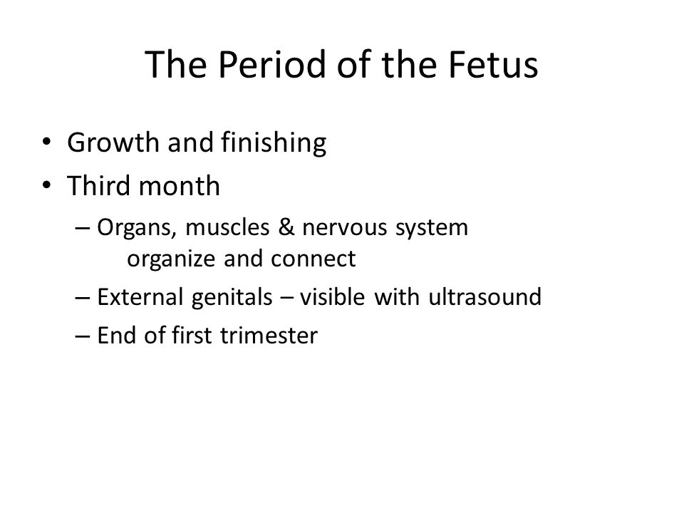 The Period of the Fetus Growth and finishing Third month