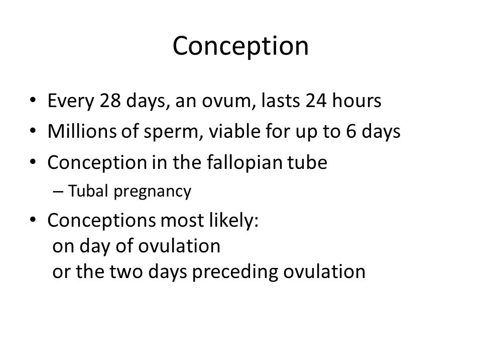 Conception Every 28 days, an ovum, lasts 24 hours