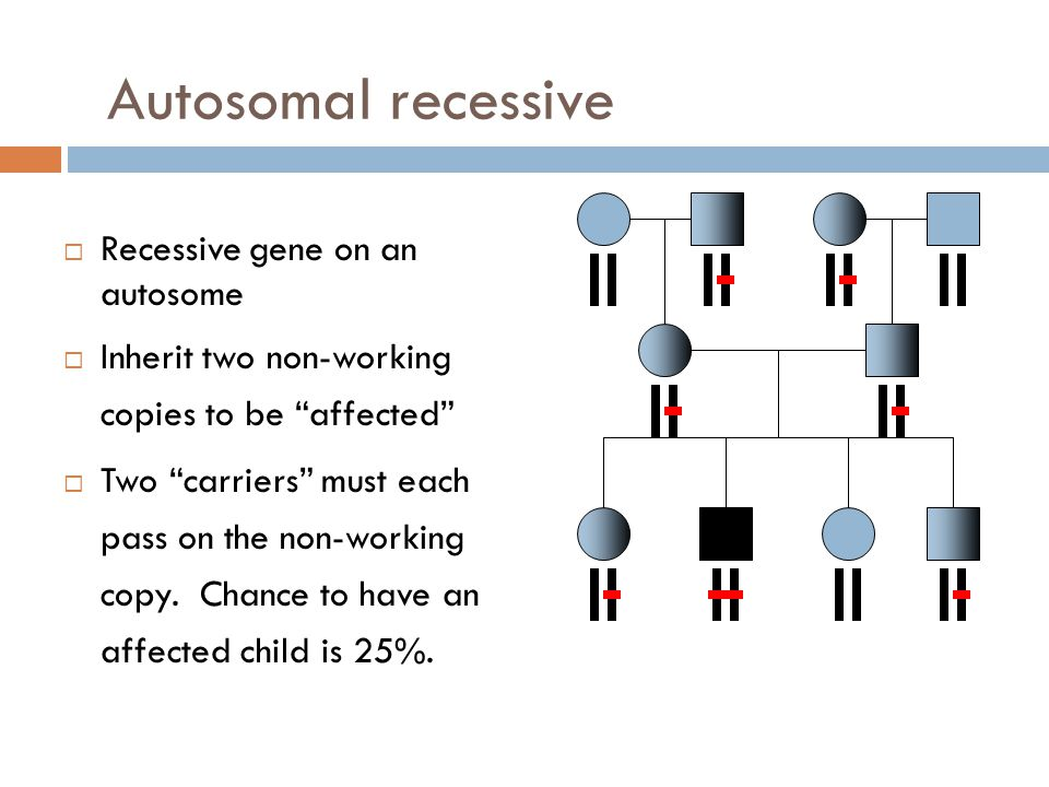 Autosomal recessive Recessive gene on an autosome