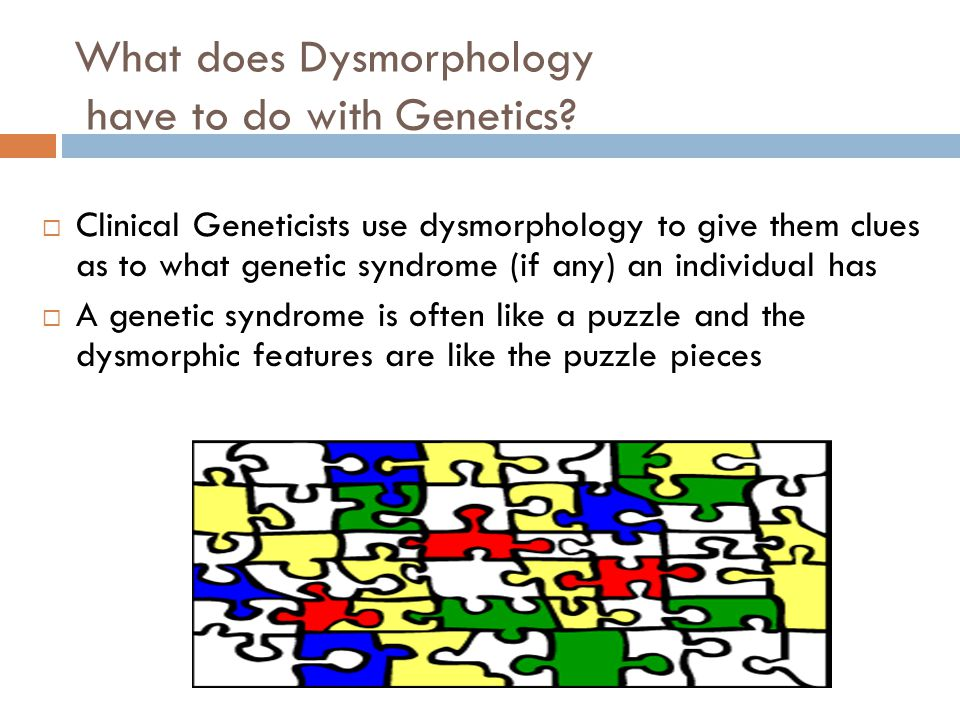 What does Dysmorphology have to do with Genetics