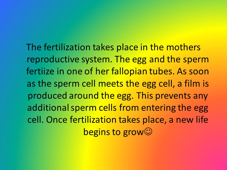 The fertilization takes place in the mothers reproductive system