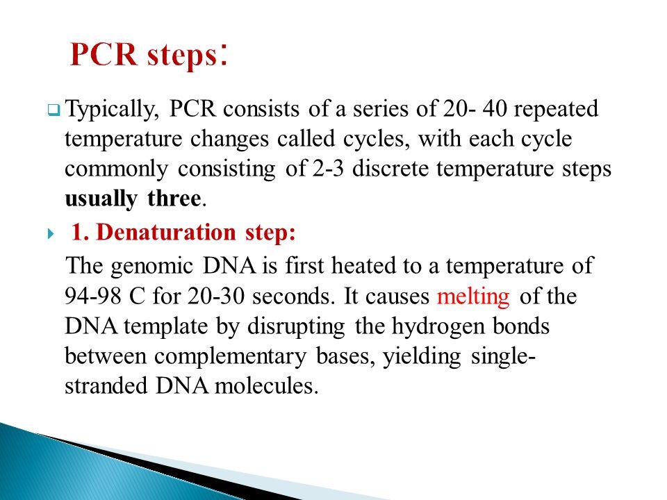 PCR steps: