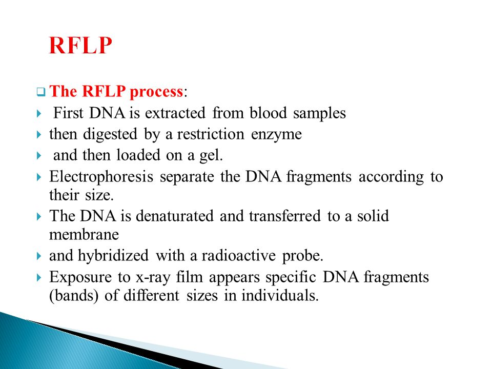 RFLP The RFLP process: First DNA is extracted from blood samples