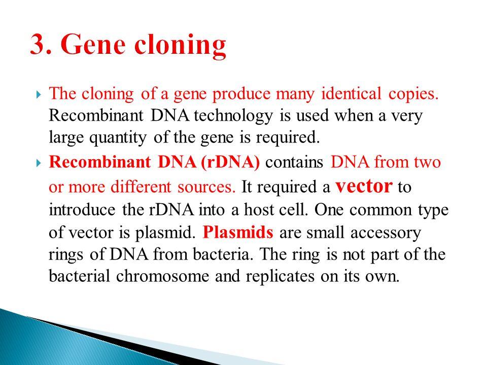 3. Gene cloning