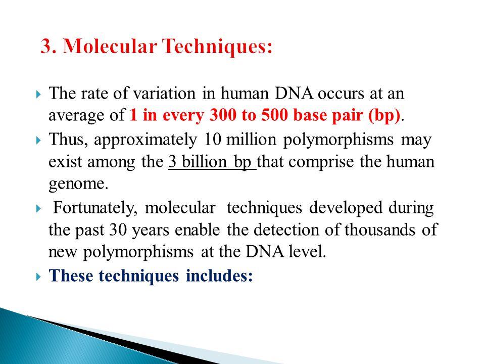 3. Molecular Techniques:
