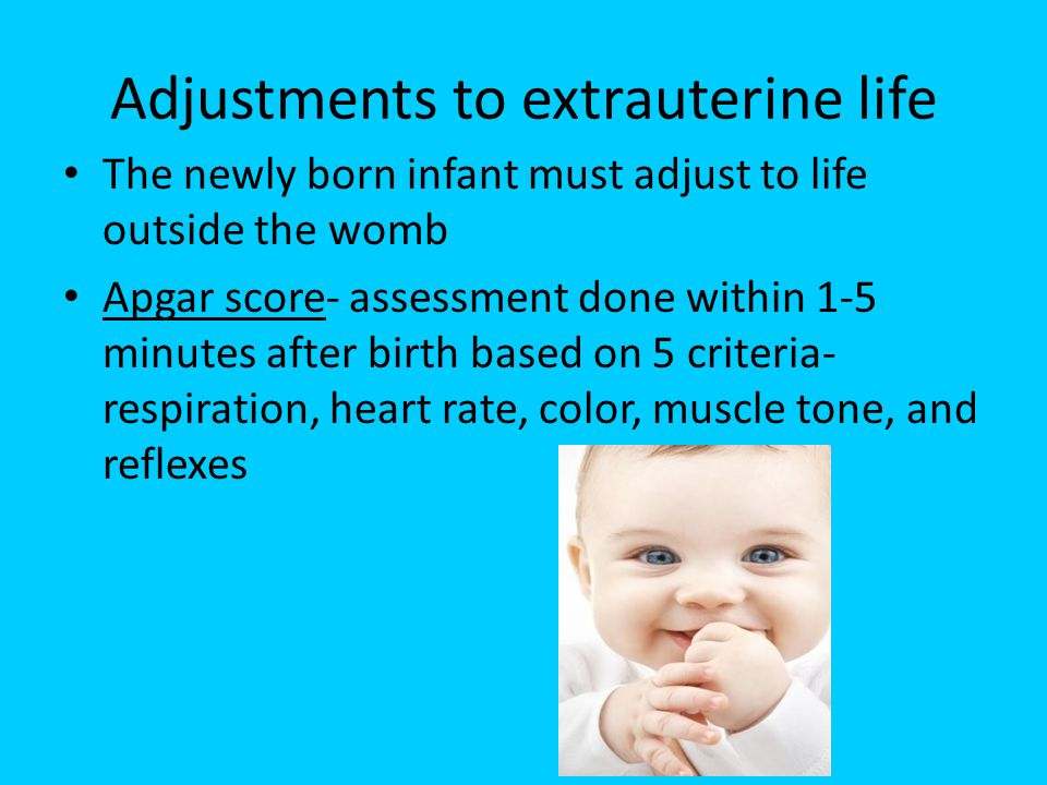 Adjustments to extrauterine life