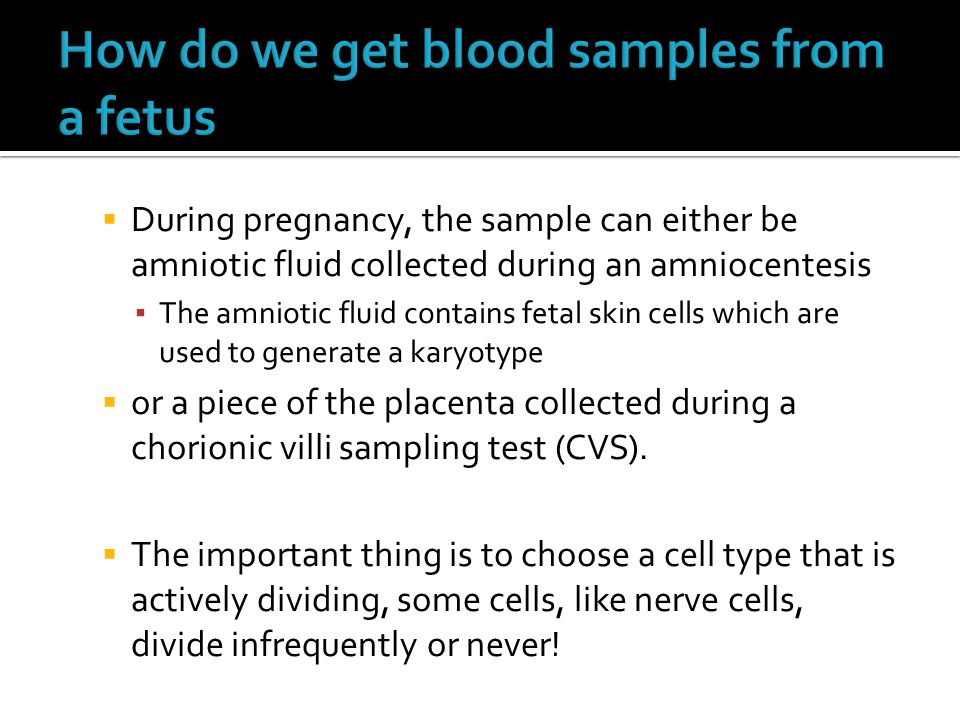 How do we get blood samples from a fetus
