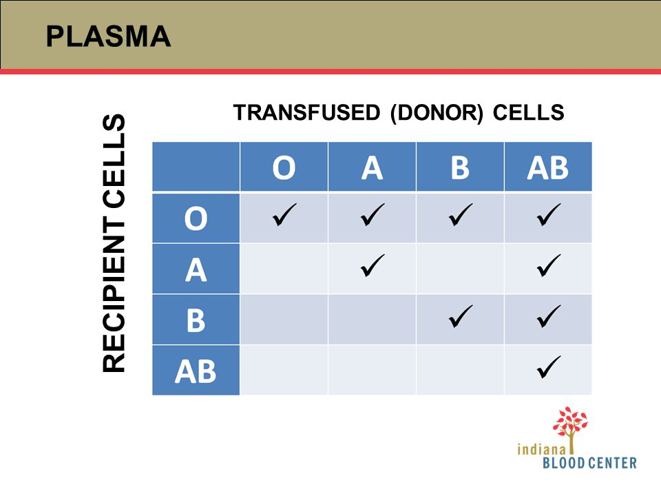 PLASMA TRANSFUSED (DONOR) CELLS RECIPIENT CELLS