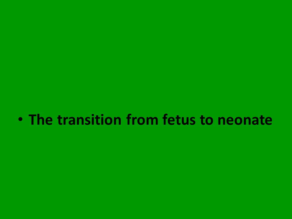 The transition from fetus to neonate