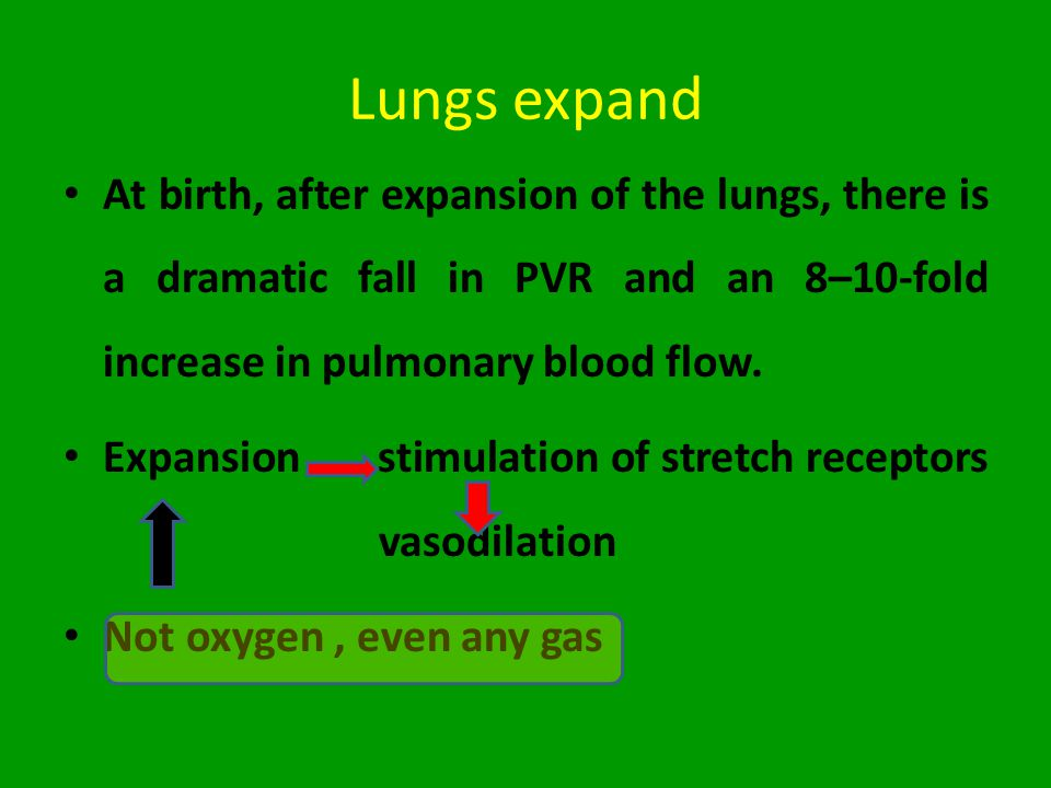 Lungs expand At birth, after expansion of the lungs, there is a dramatic fall in PVR and an 8–10-fold increase in pulmonary blood flow.